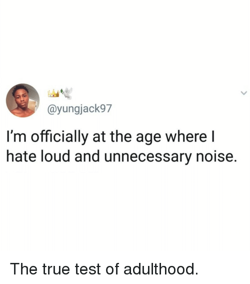 Memes, True, and Test: @yungjack97  I'm officially at the age where  hate loud and unnecessary noise. The true test of adulthood.