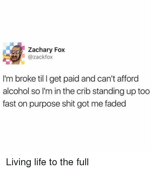 Life, Memes, and Shit: Zachary Fox  ll Gazackfox  I'm broke til I get paid and can't afford  alcohol so Im in the crib standing up too  fast on purpose shit got me faded Living life to the full