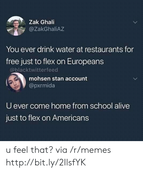 Alive, Flexing, and Memes: Zak Ghali  @ZakGhaliAZ  You ever drink water at restaurants for  free just to flex on Europeans  @blacktwitterfeed  mohsen stan account  @pxrmida  U ever come home from school alive  just to flex on Americans u feel that? via /r/memes http://bit.ly/2IlsfYK