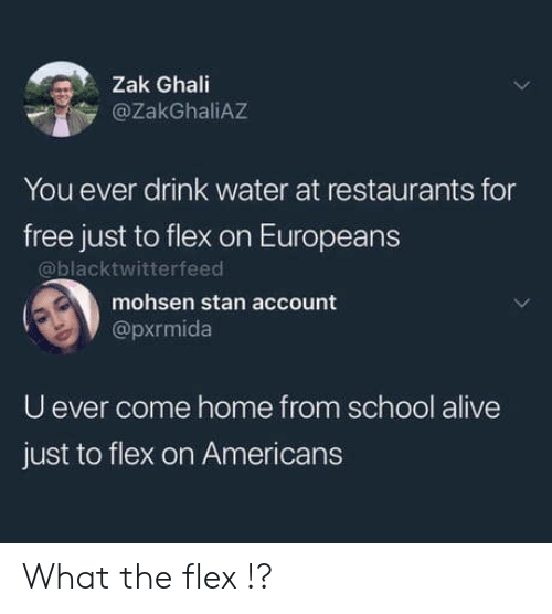 Alive, Flexing, and School: Zak Ghali  @ZakGhaliAZ  You ever drink water at restaurants for  free just to flex on Europeans  @blacktwitterfeed  mohsen stan account  @pxrmida  U ever come home from school alive  just to flex on Americans What the flex !?