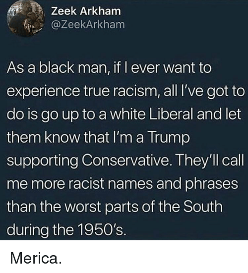 Memes, Racism, and The Worst: Zeek Arkham  @ZeekArkham  As a black man, if l ever want to  experience true racism, all I've got to  do is go up to a white Liberal and let  them know that I'm a Trump  supporting Conservative. They'll call  me more racist names and phrases  than the worst parts of the South  during the 1950's. Merica.