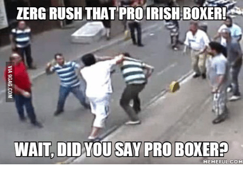 zerg rush: ZERG RUSH THAT PRO IRISH BOXER!  WAIT, DID YOU SAY PRO BOKERP  MEMEFUL COM