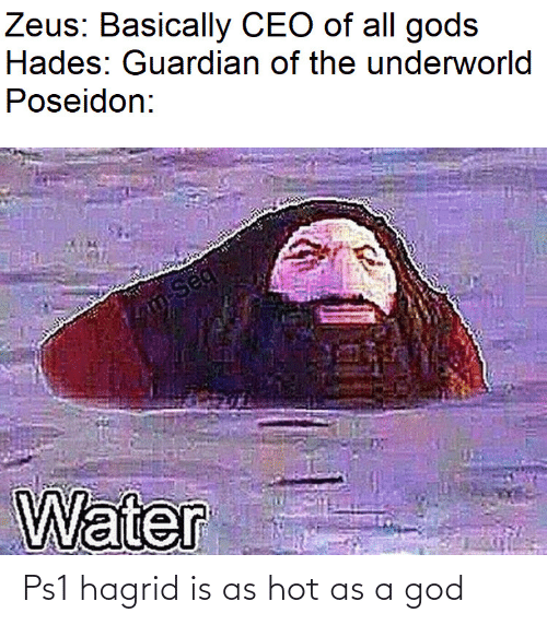 Basically: Zeus: Basically CEO of all gods  Hades: Guardian of the underworld  Poseidon:  m-Seq  Water Ps1 hagrid is as hot as a god