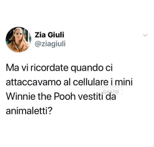 Memes, Winnie the Pooh, and 🤖: Zia Giuli  @ziagiuli  Ma vi ricordate quando ci  attaccavamo al cellulare i mini  Winnie the Pooh vestiti da  animaletti?