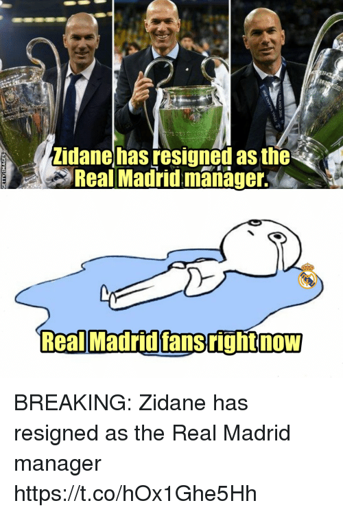 Memes, Real Madrid, and The Real: Zidanehas resigned as the  Real Madrid manager  Real MadridfansrightnoW BREAKING: Zidane has resigned as the Real Madrid manager https://t.co/hOx1Ghe5Hh