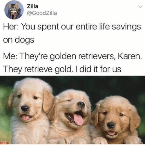 Dank, Dogs, and Life: Zilla  @GoodZilla  Her: You spent our entire life savings  on dogs  Me: They're golden retrievers, Karen.  They retrieve gold. I did it for us