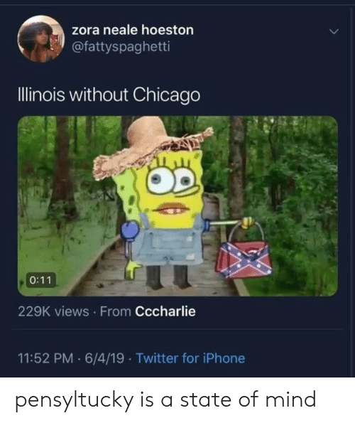 Chicago, Iphone, and Twitter: zora neale hoeston  @fattyspaghetti  Illinois without Chicago  0:11  229K views From Cccharlie  11:52 PM 6/4/19 Twitter for iPhone pensyltucky is a state of mind