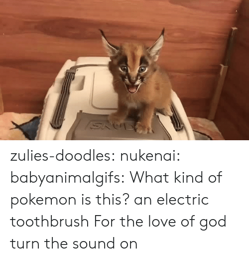God, Love, and Pokemon: zulies-doodles:   nukenai:  babyanimalgifs: What kind of pokemon is this? an electric toothbrush  For the love of god turn the sound on